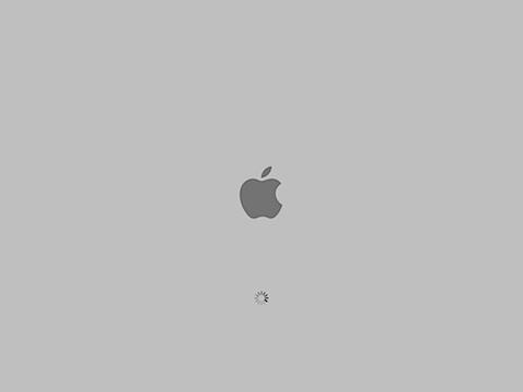 AppleBootScreen
