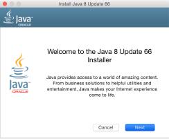 java update 8 66