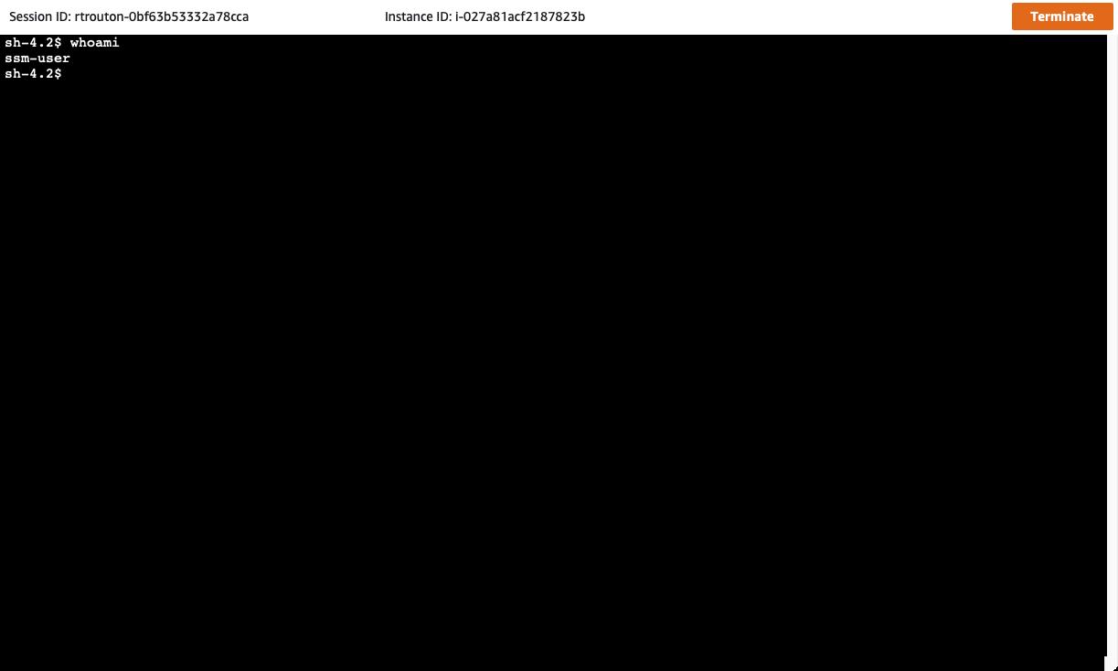 Screen Shot 2021-04-01 at 3.03.59 PM